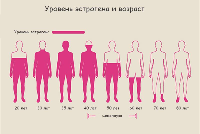 Уровень эстрогена, возраст, менопауза